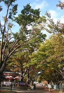 万博公園so.jpg